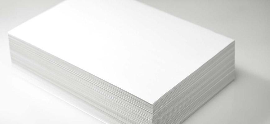 Thành lập công ty sản xuất giấy